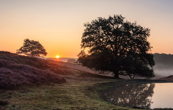 Picture Holland, Sunrise, Rheden, The Province Of Gelderland