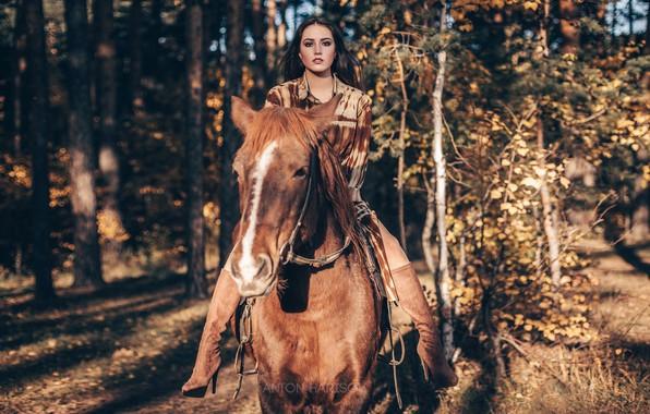 Picture girl, horse, horse, rider, rider, Maria, top, Anton Kharisov