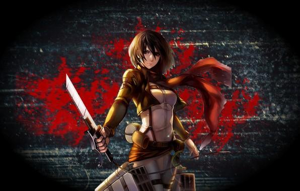 Picture anime, Titan, Mikasa, Ackerman