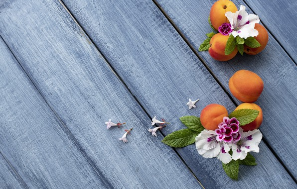 Photo wallpaper flowers, background, blue, apricot