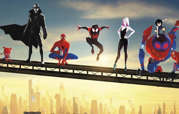 Picture Spider Man, Ultimate Spider-Man, Amazing Spider-Man, Spider Gwen, Spider-Ham, Spider Man:Into The Spider-Verse, Noir Spider …