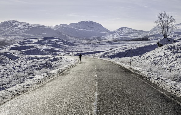 Picture winter, road, people
