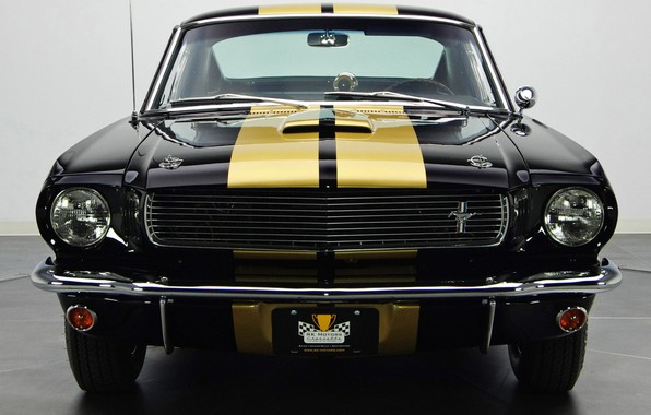 Picture Ford Mustang, Muscle car, Vehicle, Shelby GT 350 H