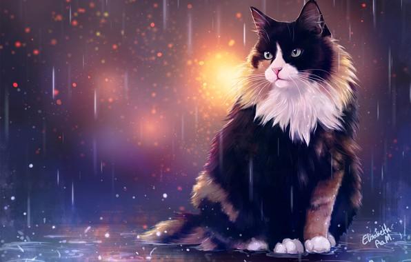 Picture Drops, Figure, Cat, Autumn, Cat, Rain, Art, Cat, Illustration, Animal, Cats, Elisabeth Aarebrot Madsen, by …