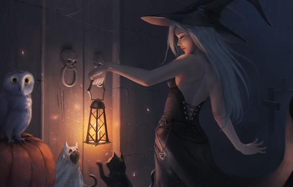 Picture girl, cats, owl, hat, dress, the door, art, lantern, Halloween, skull, witch