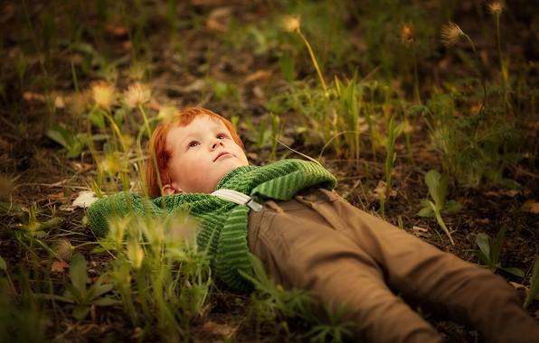 Picture grass, nature, boy, child, dreamer, Marianne Smolin