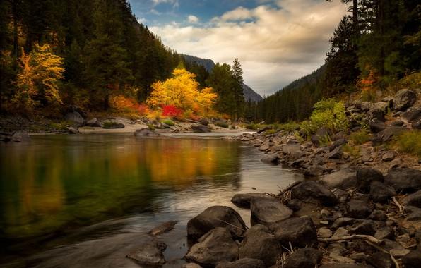 Picture autumn, forest, river, stones, hills, Doug Shearer