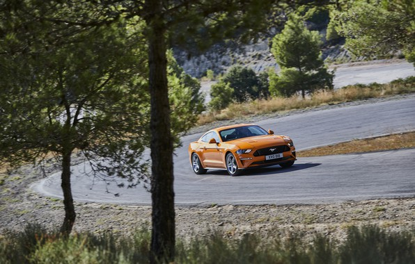 Wallpaper Trees Orange Ford Turn 2018 Fastback Mustang Gt 5 0