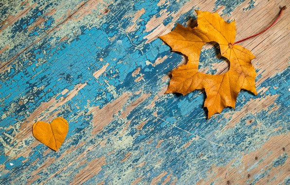 Picture autumn, leaves, love, heart, love, maple, heart, yellow, wood, autumn, leaves, grunge, maple