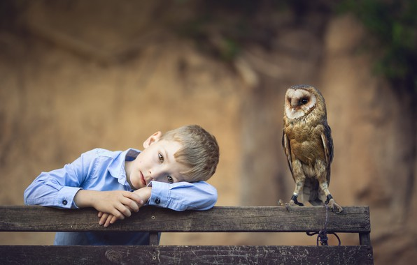 Picture sadness, look, bench, nature, face, pose, mood, owl, bird, portrait, boy, shirt, blurred background, the …