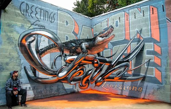 Picture wall, graffiti, alligator