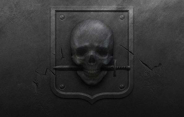 Picture metal, cracked, skull, black background, coat of arms