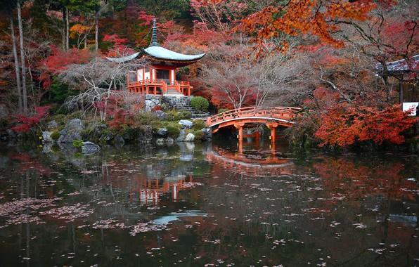 Picture autumn, trees, pond, Park, stones, Japan, the bridge, Kyoto, the bushes, pagoda