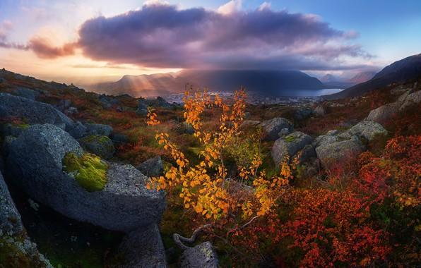 Picture autumn, rays, light, landscape, mountains, clouds, nature, stones, tree, Khibiny, The Kola Peninsula, Konstantin Voronov