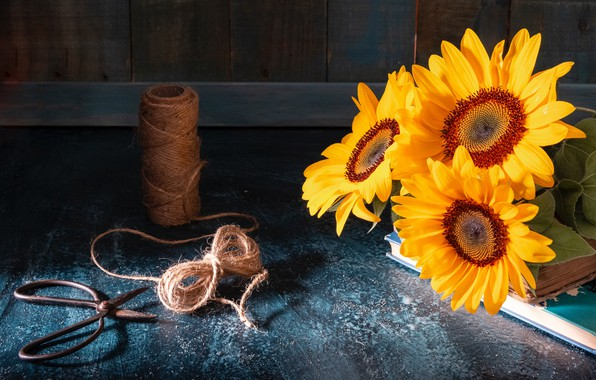 Picture sunflowers, style, books, twine, scissors, coil