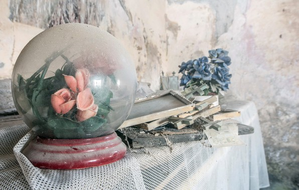 Picture flowers, house, dust, naturalism