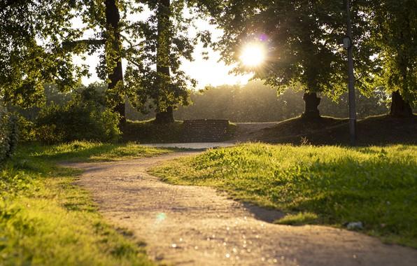 Picture nature, Park, Fairy world, Peterhof, Alexandria, beautiful Park, Fabulous Park, Fabulously