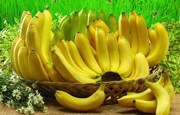 Picture grass, flowers, bananas, fruit