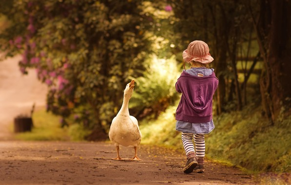 Photo wallpaper road, girl, goose