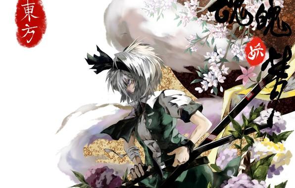 Picture spirit, katana, characters, white background, profile, bow, white hair, art, hydrangea, Myon, Konpaku Youmu, Touhou …