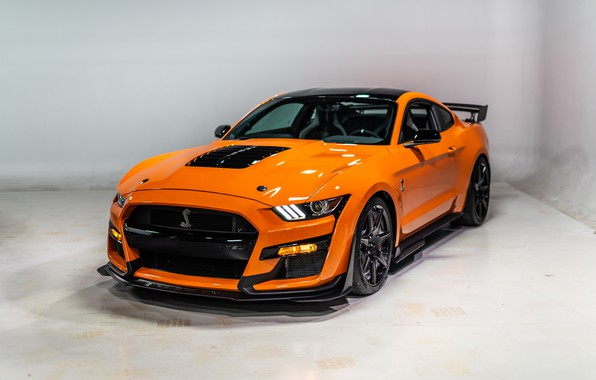 Picture Mustang, Ford, Shelby, GT500, 2020