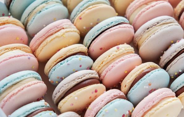Picture colorful, dessert, pink, cakes, sweet, sweet, dessert, macaroon, french, macaron, macaroon