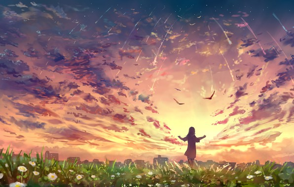 Picture the sky, girl, sunset, flowers, birds, nature, the city