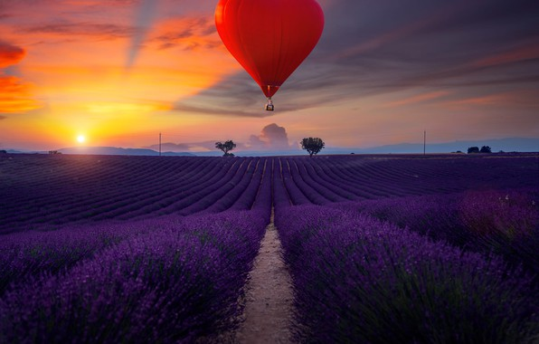 Picture field, landscape, sunset, nature, balloon, heart, France, the evening, lavender