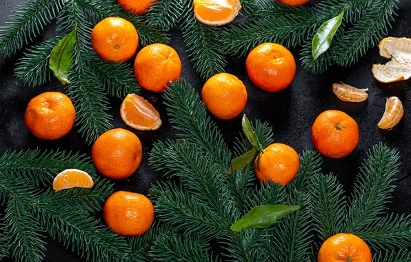 Picture Christmas, New year, slices, tangerines, spruce branches