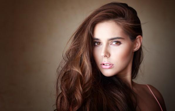 Picture look, hair, portrait, brown hair