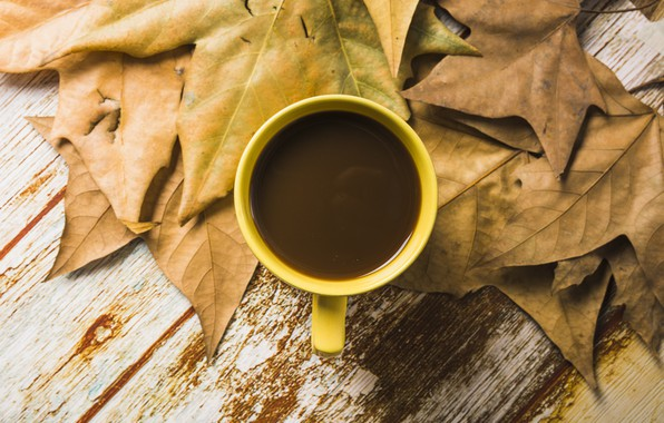 Picture autumn, leaves, background, tree, coffee, colorful, Cup, wood, background, autumn, leaves, cup, coffee, autumn, maple