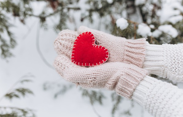 Picture winter, snow, love, heart, tree, red, love, heart, winter, mittens, snow, romantic, hands, valentine, fir …