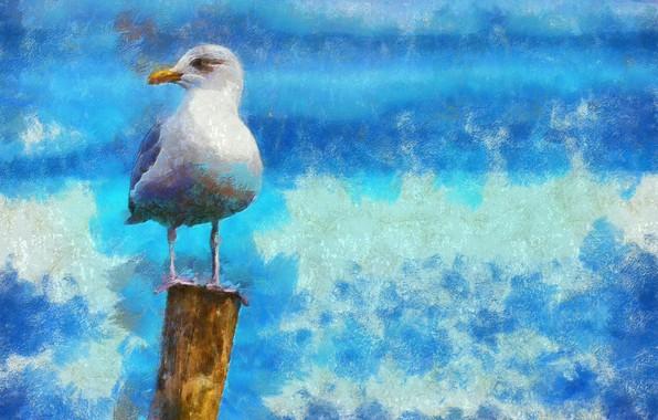 Picture paint, photoshop, painting, strokes, texture