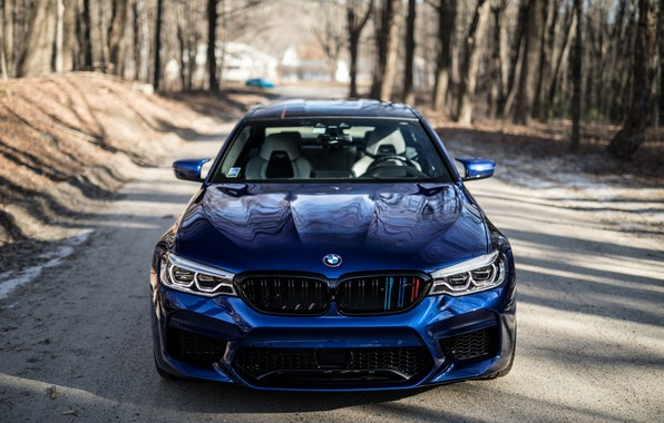 Picture BMW, Blue, Forest, Sight, F90, Adaptive LED