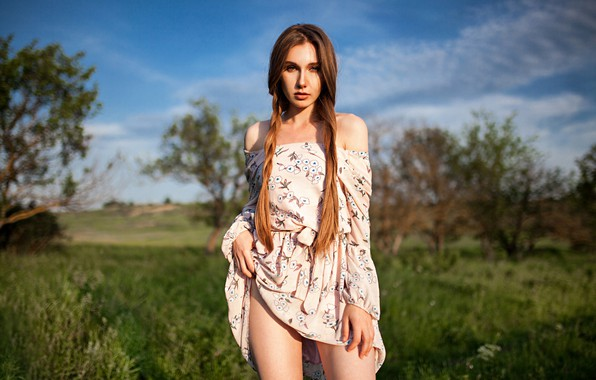 Picture greens, field, grass, look, the sun, trees, model, portrait, makeup, figure, dress, hairstyle, braids, brown …