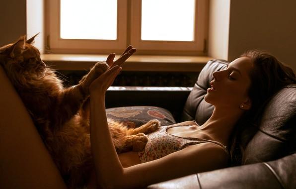 Picture cat, cat, girl, legs, hands, Maine Coon, okay, Nu Panda, Алина Грачёва