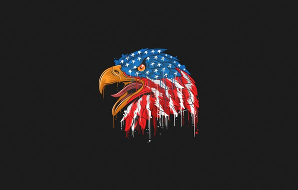 Picture Color, Bird, Style, Flag, Eagle, Head, Beak, USA, Eagle, Art, Art, Style, Color, Head, Flag, …