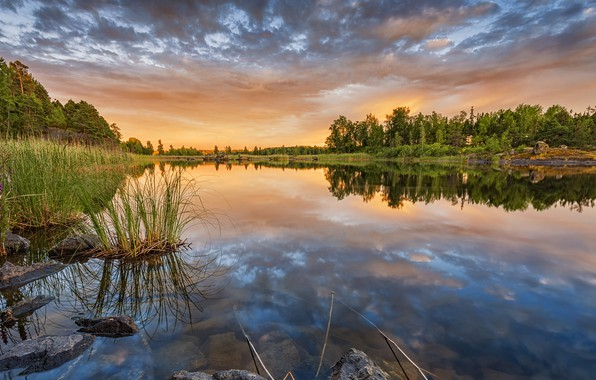 Picture forest, sunset, reflection, river, Finland