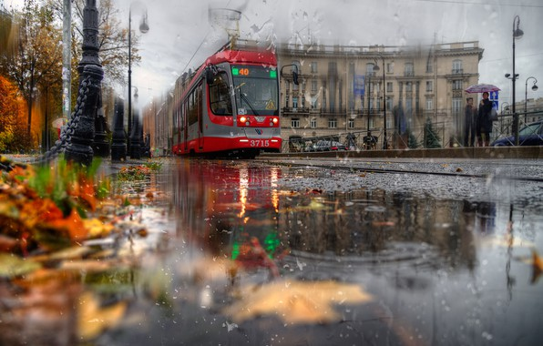 Picture autumn, leaves, the city, rain, street, the building, Peter, Saint Petersburg, puddles, tram, Ed Gordeev, …