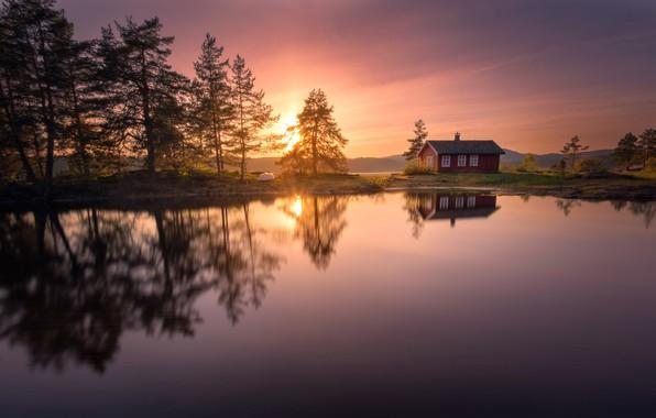 Picture trees, sunset, lake, reflection, Norway, house, Norway, RINGERIKE, Ringerike
