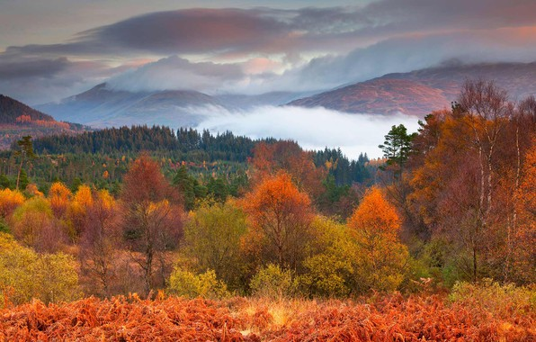 Picture autumn, trees, mountains, Scotland, National Park Loch Lomond and the Trossachs
