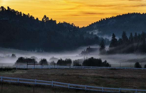 Picture nature, fog, Colorado, Morning After