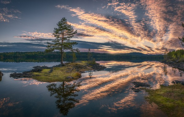 Picture forest, clouds, lake, reflection, tree, island, Norway, pine, Norway, RINGERIKE, Ringerike