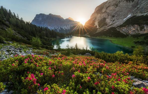 Picture forest, the sun, rays, landscape, mountains, nature, lake, vegetation, Austria, Alps, Sebensee lake