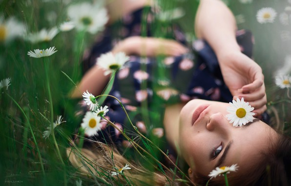 Picture look, girl, flowers, face, mood, chamomile, Denis Lankin