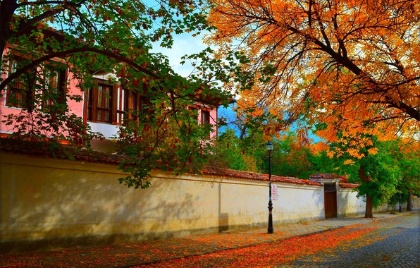 Picture The city, Autumn, House, Street, House, Fall, Autumn, Street, Town