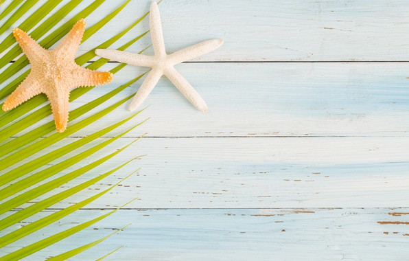 Picture beach, summer, Board, star, summer, beach, wood, starfish