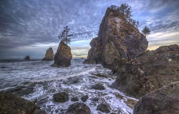 Picture landscape, nature, coast, beauty, nature