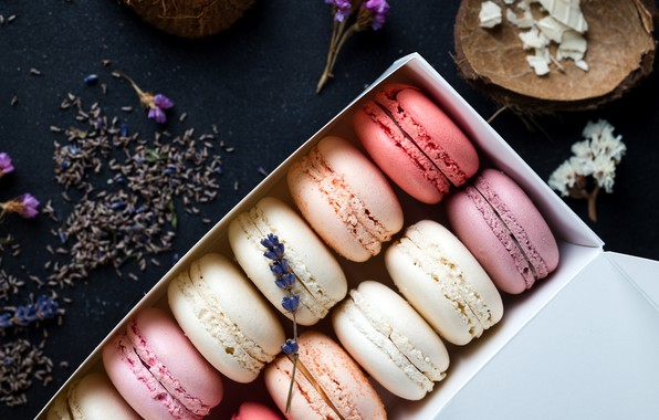 Picture colorful, box, flowers, lavender, lavender, french, macaron, macaroon