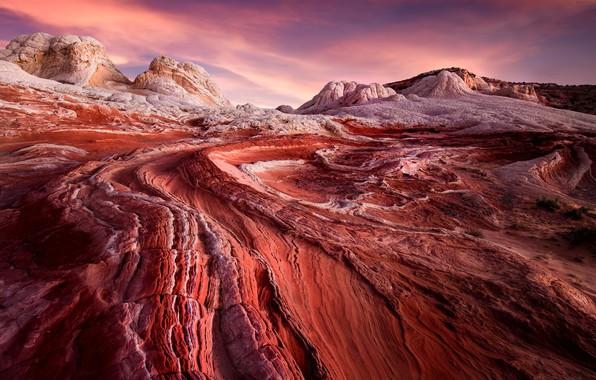 Picture desert, sunrise, usa, arizona, white pocket